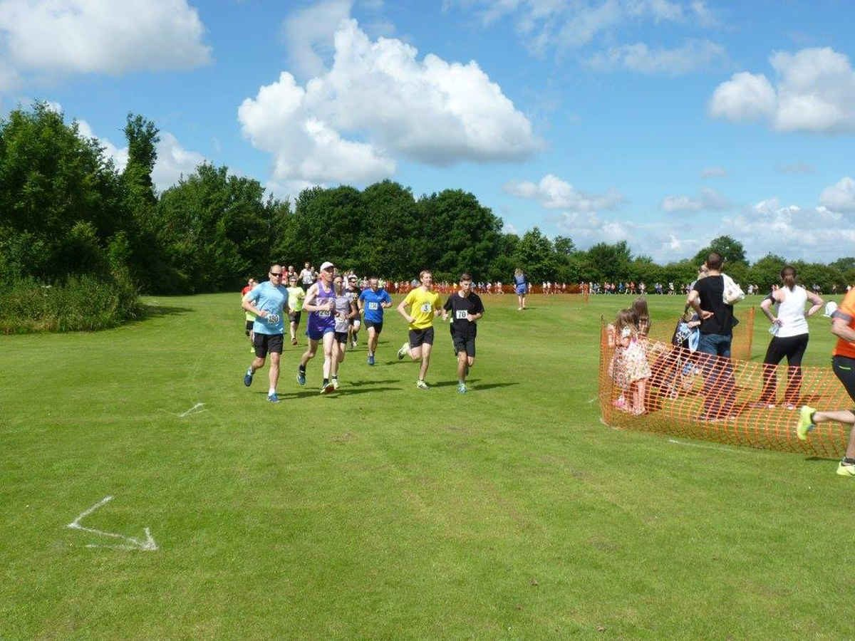 Fen Gallop 10K Race Report: Lovely Cross-Country Run